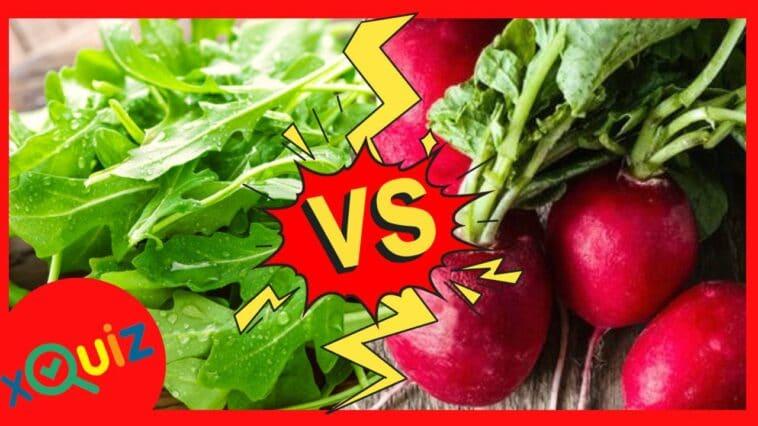 che vegetale sei